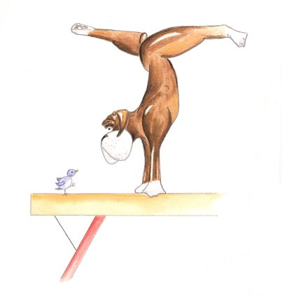 Benson on the beam 2