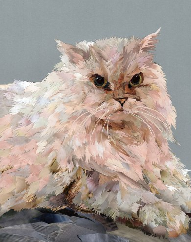 White-cat-final