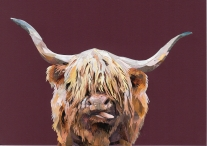 Highland Hairy- Laura Brenchley