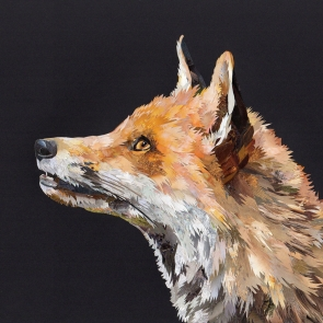Majestic-Fox